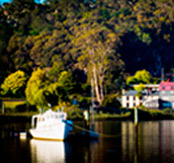 The Tamar River Launceston